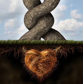 At the Root of it all is love