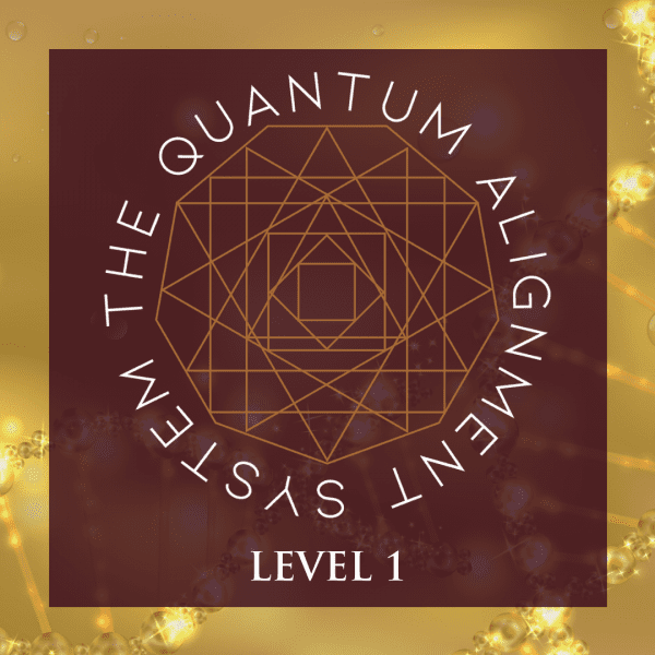 Quantum Alignment System Level 1 Certification
