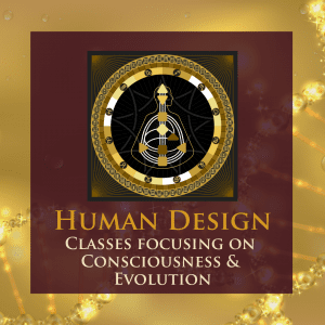 Classes focusing on Consciousness and Evolution