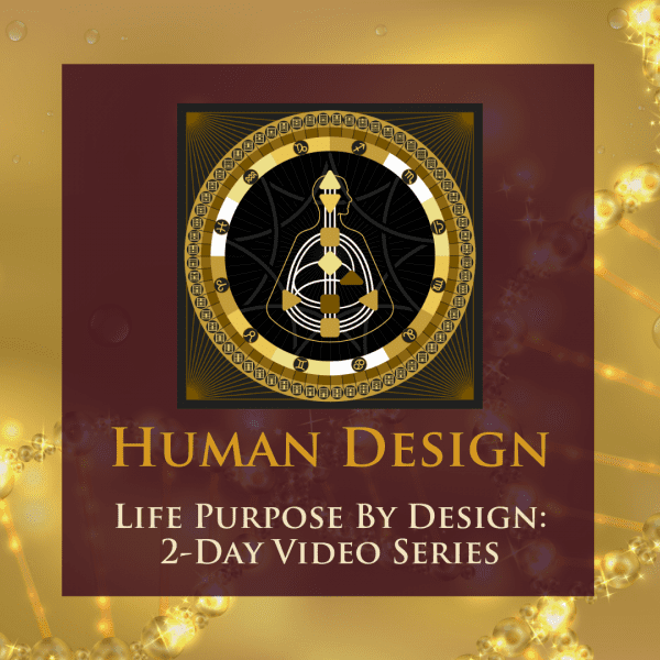 Life Purpose by Design 2-Day Video Series