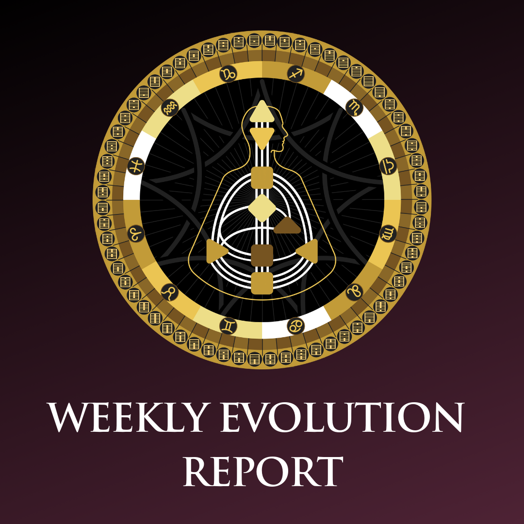 Weekly Evolution report logo