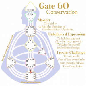 Gate 60-Conservation