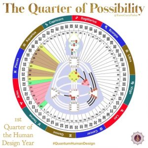 1st Quarter - Possiblity