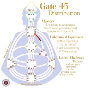 Gate 45 Distribution