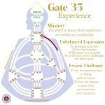 Gate 35-Experience